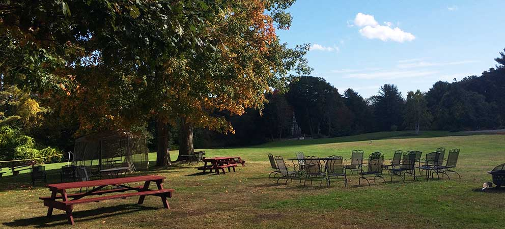 An expansive lawn with picnic table, metal chairs in circle, and tree with leaves starting to turn colors