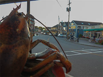 : A large fake red lobster in the foreground with a view of a village street beyond